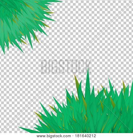 Vector Grass Elements On Transparent Groundwork