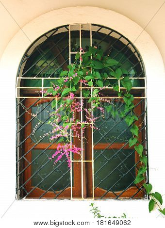 old semicircular window of church with flowers in goa, india
