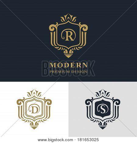 Monogram design elements graceful template. Calligraphic elegant line art logo design. Letter emblem sign R D S for Royalty business card Boutique Hotel Heraldic Jewelry. Vector illustration
