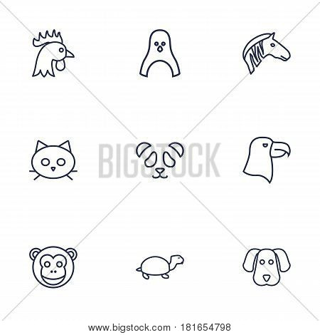 Set Of 9 Alive Outline Icons Set.Collection Of Mammal, Cat, Feline Bear And Other Elements.