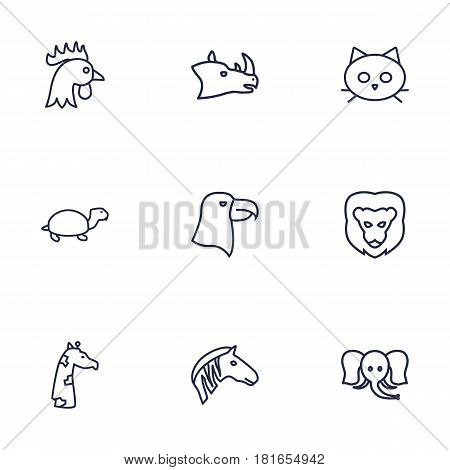 Set Of 9 Beast Outline Icons Set.Collection Of Elephant, Giraffe, Cock And Other Elements.