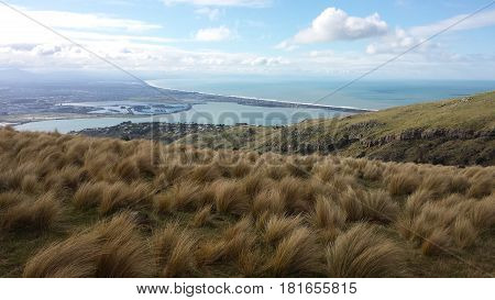 Yellow grass of Cavendish Hill and white clouds in the blue sky. Christchurch. New Zealand landscapes.