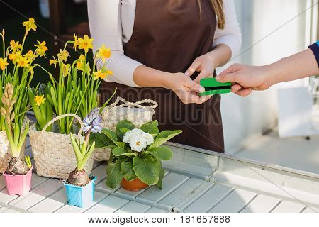 The buyer gives the card to the florist-seller, paying for the purchase of flowers. cashless payments for the purchase, close-up hands.