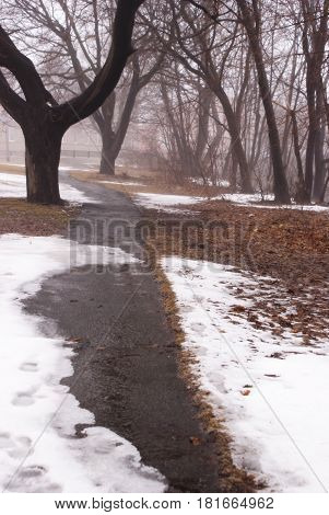 Looking down the footpath of the melting snow during the seasonal transition into springtime.