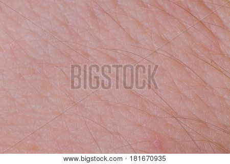 Human Skin Texture Close Up. Macro Of Brown Young Person Clean Skin