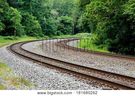 Some railroad tracks going around a curve in the forest.