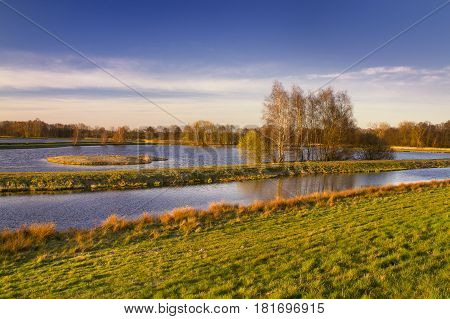 Steinhorster Becken-Waterbirds wild reservation,birds nesting place in Westphalia,Germany.