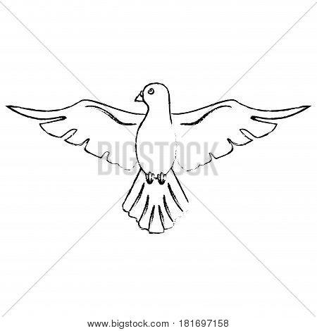 holy spirit catholicism sacredness sketch vector illustration eps 10