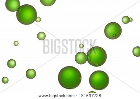 Green water bubbles soars over a white background