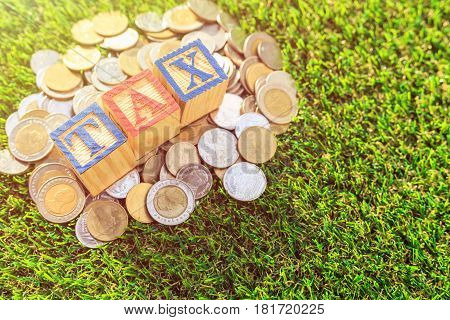 Tax Write In Color Alphabet Wood Box On Stack Of Thai Baht Coin On Green Grass. For Time To Pay Tax