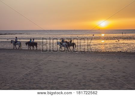 People riding horses walking on the beach at sunset in Sanlucar de Barrameda (Cadiz) - Spain.