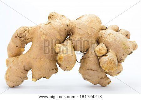 Fresh Ginger on white background nutition herb on white background