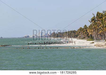 Naples Fl USA - March 18 2017: Tropical beach with coconut palm trees in the city of Naples Florida United States