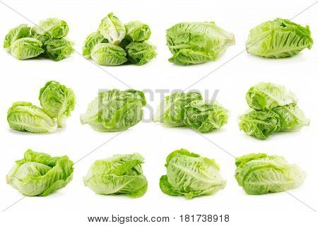 Romain Lettuce isolated on a white background