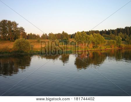 Beautiful forest near river in the sunset time horizontal view