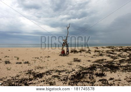 Portugal. Ilha deserta. Sand with branch and sea on blue sky background horizontal view. South point of Portugal