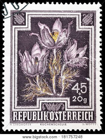 AUSTRIA - CIRCA 1948 : Cancelled postage stamp printed by Austria, that shows Pasque flower.