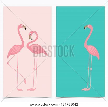 Vector illustration of a pink flamingo. Tropical bird flamingos