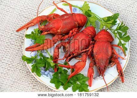 Boiled crawfish. Boiled crawfish - delicious gourmet food. When they are cooked, it turns red. Eaten with beer.