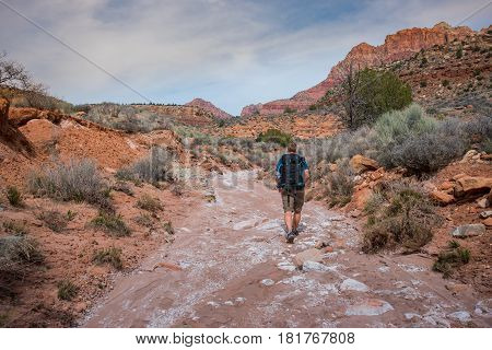 Male Hiker Exploring Wash Trail through Zion