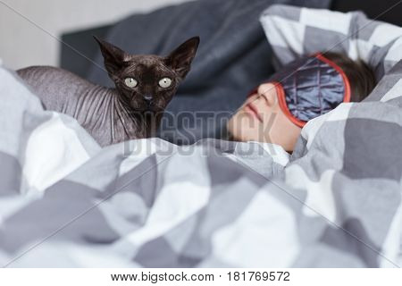 The unique bodyguard. Oriental cat is on guard taking care of young lady who is sleeping untill midday after great party last night. Not to be distubed by the light she is wearing eye mask. Youth concept.