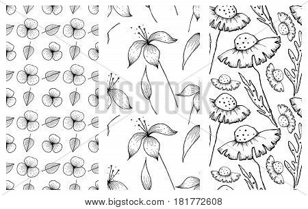 Set of vector illustrations of flowers. Seamless black and white backgrounds with hand drawn lily, dandelions with leaves Hand drawn contour lines and strokes Graphic vector illustration. Line drawing