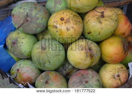 Star apple is one of fruit which has amazing taste: its juice is fragrant sweet and milky-white as breast milk.