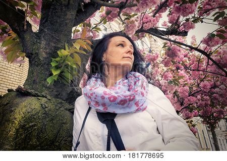 Photographer lady standing under the flowering trees peering composition to the next topic