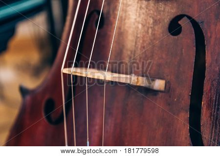 Close-up of cello strings, classical music concept, vertical photo