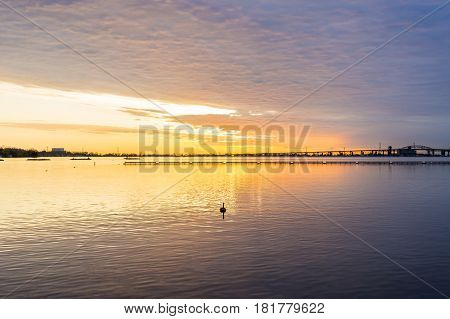 Deep golden sunrise over calm lake silhouette of bird swimming in foreground dramatic cloudscape