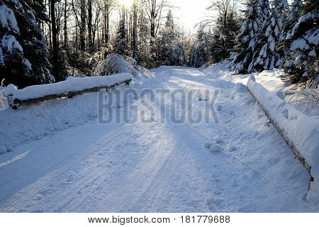Forest snow-covered country road on a sunny day
