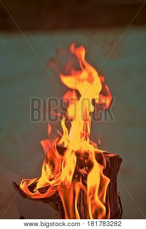 documents on fire. abstract scrap object wastepaper