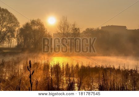 Spring morning landscape at sunrise. The rising sun in the city park over the pond.