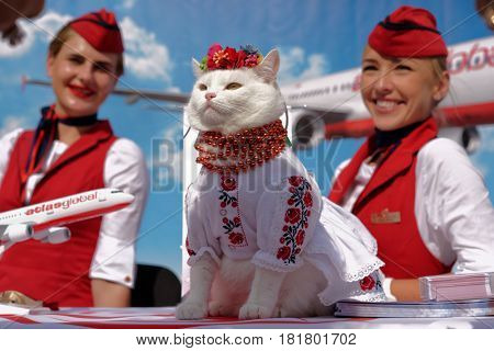 KIEV, UKRAINE - OCTOBER 1, 2016: White cat in Ukrainian national costume used in promotion of Turkish air company Atlas Global. Founded in 2001, Atlasjet airlines is certified in Ukraine since 2014