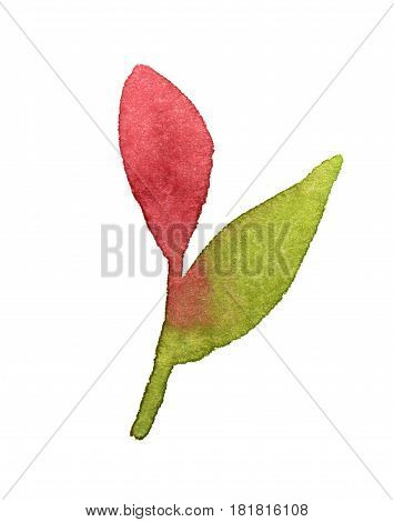 Branch with pink leaf. Watercolor white background