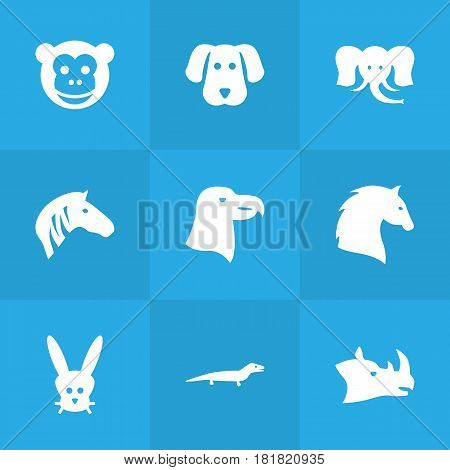Set Of 9 Brute Icons Set.Collection Of Ape, Bird, Steed And Other Elements.
