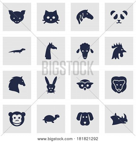 Set Of 16 Beast Icons Set.Collection Of Bunny, Rhinoceros, Tomcat And Other Elements.