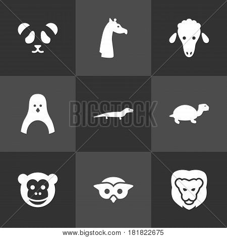 Set Of 9 Alive Icons Set.Collection Of Owl, Bear, Sea Bird And Other Elements.