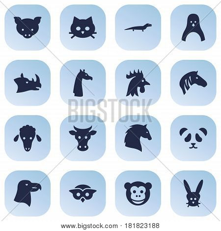 Set Of 16 Brute Icons Set.Collection Of Bird, Steed, Mutton And Other Elements.