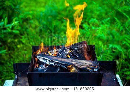 Fire in the Brazier on the Nature