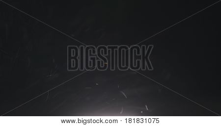 dust particles fast moving over black background from below, 4k photo
