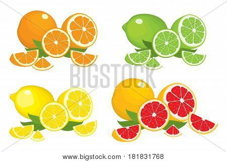 Collection of citrus products - orange, lemon, lime and grapefruit with leaves, isolated on white background. Vector set of whole fruits and slices. Colourful illustration for design.