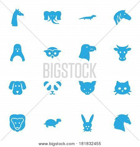 Set Of 16 Alive Icons Set.Collection Of Bear, Tomcat, Kine And Other Elements.