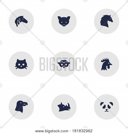 Set Of 9 Alive Icons Set.Collection Of Owl, Hog, Bird And Other Elements.
