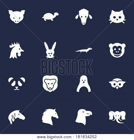 Set Of 16 Beast Icons Set.Collection Of Hog, Bunny, Ape And Other Elements.