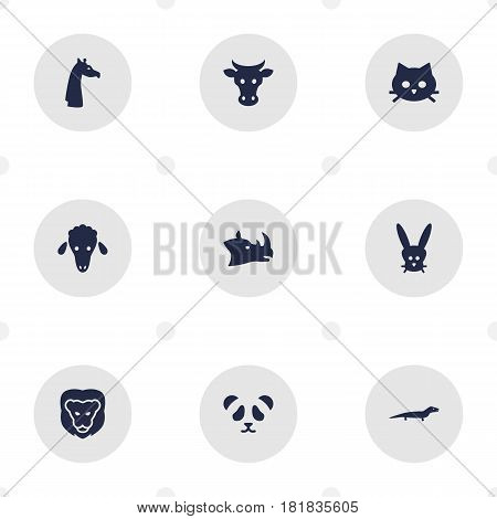 Set Of 9 Brute Icons Set.Collection Of Kine, Camelopard, Tortoise And Other Elements.