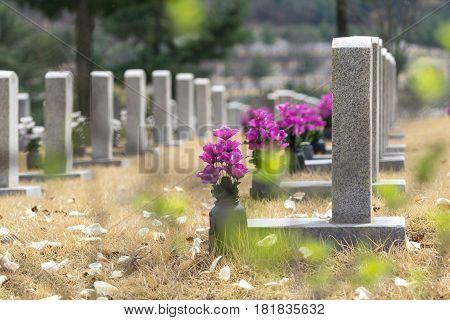 Gravestones At Seoul National Cemetery
