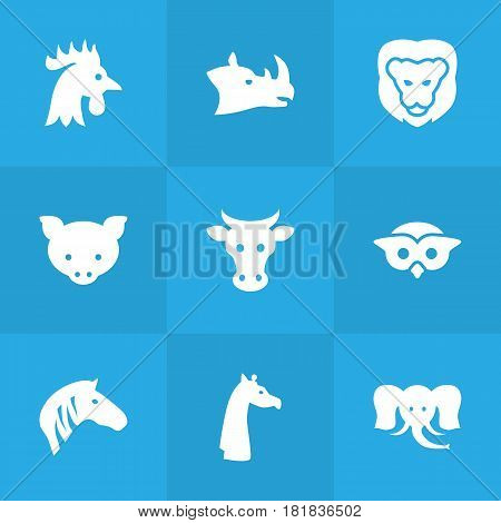 Set Of 9 Alive Icons Set.Collection Of King, Hoss, Camelopard And Other Elements.