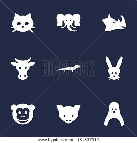 Set Of 9 Brute Icons Set.Collection Of Tomcat, Ape, Bunny And Other Elements.