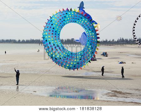 Flying Figure Kite: Sea Urchin Shaped At The Adelaide International Kite Festival